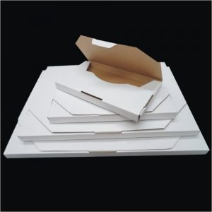 200pcs 220 x 160 x 16mm Diecut Flat Mailing Box