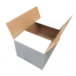 100pcs Regular Slotted 270 x 160 x 100mm Mailing Box