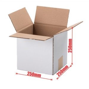 50pcs Regular Slotted 250 x 250 x 250mm Mailing Box