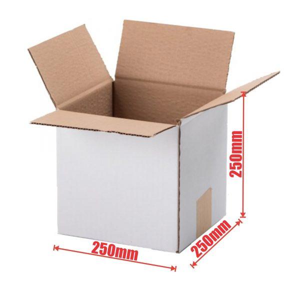 50pcs Regular Slotted 250 x 250 x 250mm Mailing Box