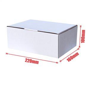 White 100pcs 220 x 160 x 100mm Diecut Mailing Box