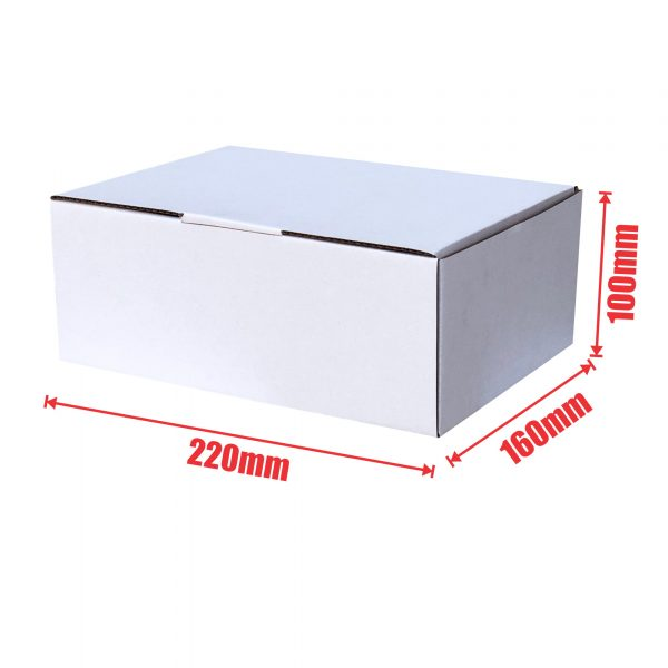 White 100pcs 220 x 160 x 100mm Diecut Mailing Box